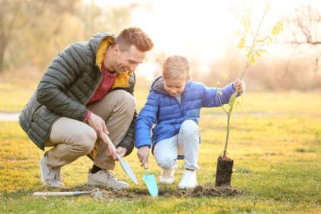 Ojciec z małym synem sadzi drzewo na zewnątrz