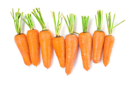 Tasty ripe carrots on white background