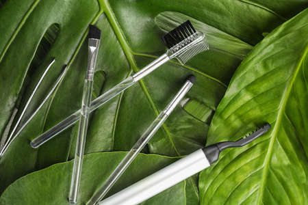 Tools for eyebrow dyeing and correction on green leaves