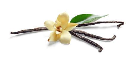 bâtons de vanille et de fleurs sur fond blanc