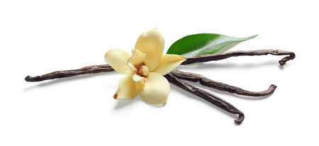 Vanilla sticks and flower on white background