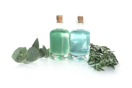 Bottles of aromatherapy oils and eucalyptus with rosemary on white background Stok Fotoğraf