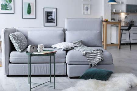 Elegant living room interior with comfortable sofa