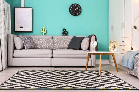 Modern living room interior with stylish sofa and carpet Stockfoto