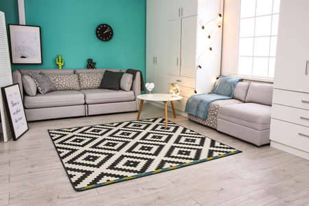 Modern living room interior with stylish sofas and carpet Stockfoto - 106966532