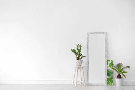 Modern interior with large stylish mirror with tropical plants