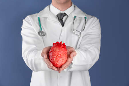 Doctor holding model of heart on color background. Prevent heart attack Banque d'images