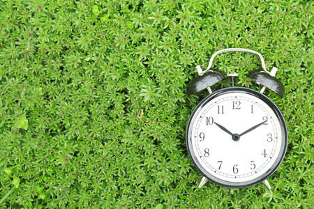 Alarm clock on green plants, outdoors. Time change concept Stock Photo - 105425846