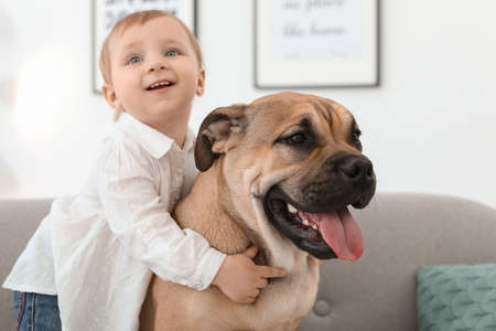 Cute little child with dog on couch at home Imagens