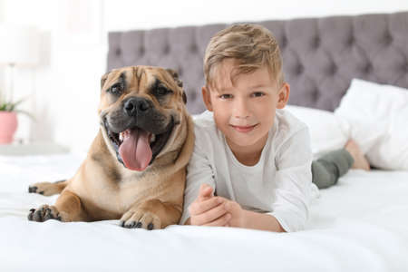 Cute little child with his dog resting on bed at home