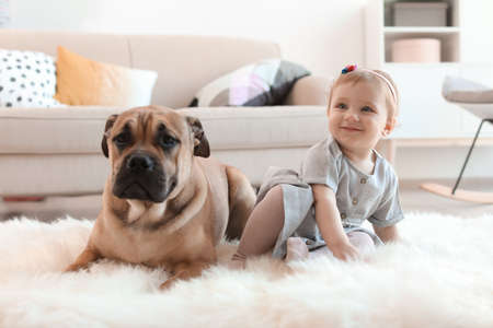 Cute little child with dog at home 写真素材