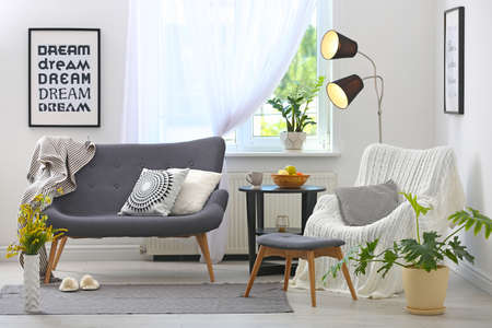 Elegant living room interior with comfortable sofa and armchair Reklamní fotografie
