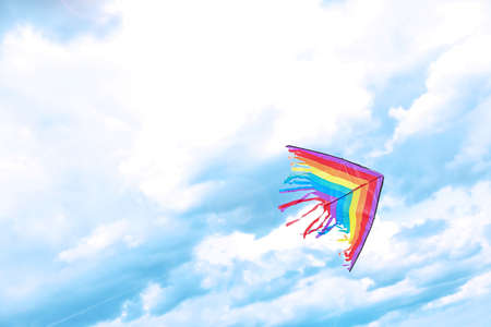 Beautiful kite drifting in blue sky