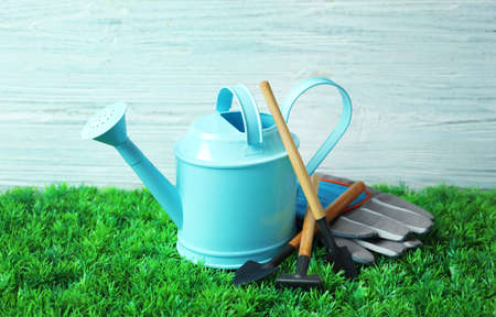 Set of professional gardening tools on artificial grass Stock Photo