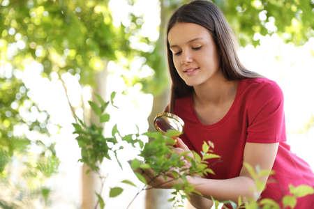 Teenage girl exploring bush outdoors. Summer camp