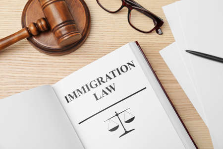 Book with words IMMIGRATION LAW, gavel and glasses on wooden background, top view Stock Photo