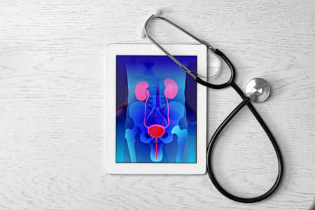 Tablet displaying urinary system and stethoscope on wooden background. Urology concept