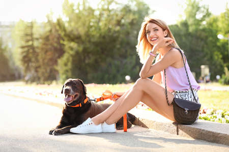 Cute brown labrador retriever with owner outdoors