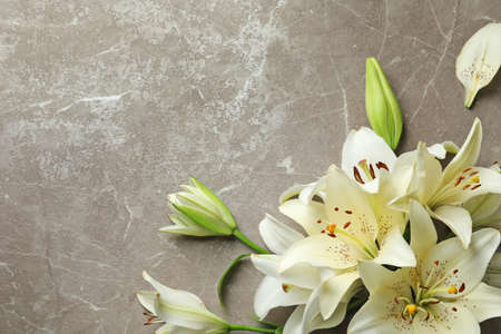 Flat lay composition with lily flowers on grey background Stock Photo