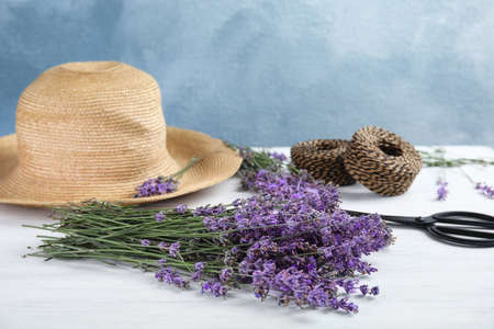 Composition with lavender flowers on light background