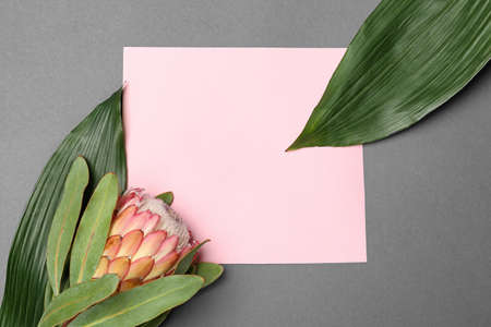 Creative flat lay composition with tropical leaves and protea flower on gray background