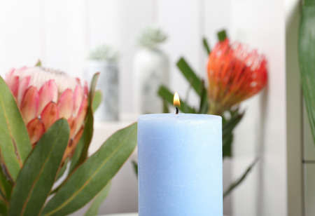 Burning candle and tropical plants on background