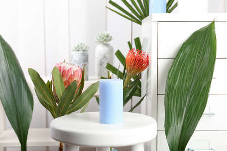 Creative composition with candle and tropical plants indoors Banque d'images