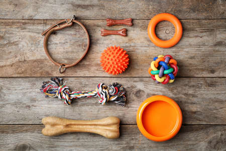Flat lay composition with accessories for dog on wooden background. Pet care