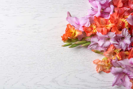 Beautiful gladiolus flowers on light wooden background Stock fotó