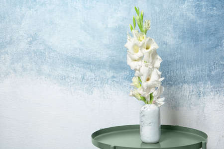 Vase with beautiful gladiolus flowers on table against color background Stock fotó - 106483529