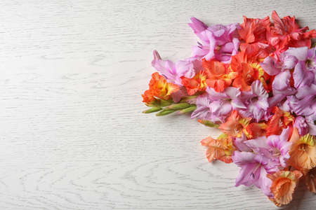 Beautiful gladiolus flowers on light wooden background Stock fotó - 106490828