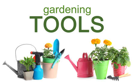 Set with modern gardening tools on white background