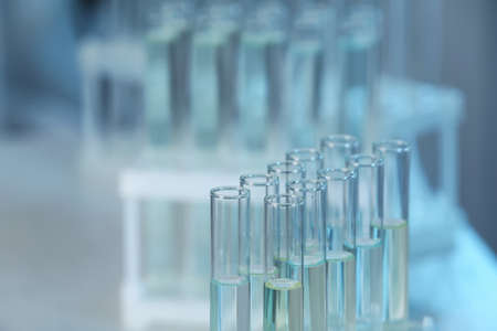 Holder with test tubes in laboratory. Chemical analysis