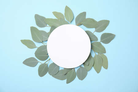 Fresh eucalyptus leaves and blank card with space for design on color background, top view Stock Photo