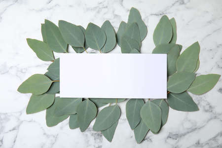 Fresh eucalyptus leaves and blank card with space for design on marble background, top view