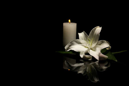 Beautiful lily and burning candle on dark background with space for text. Funeral flower Foto de archivo - 106621477