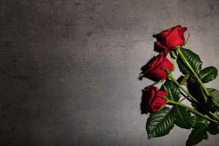 Beautiful red roses on grey background, top view. Funeral symbol Standard-Bild