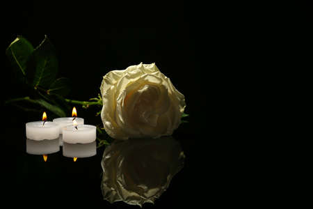 Beautiful%20White%20Rose%20And%20Candles%20On%20Black%20Background.%20Funeral..%20Stock%20%20Photo,%20Picture%20And%20Royalty%20Free%20Image.%20Image%20106662883.