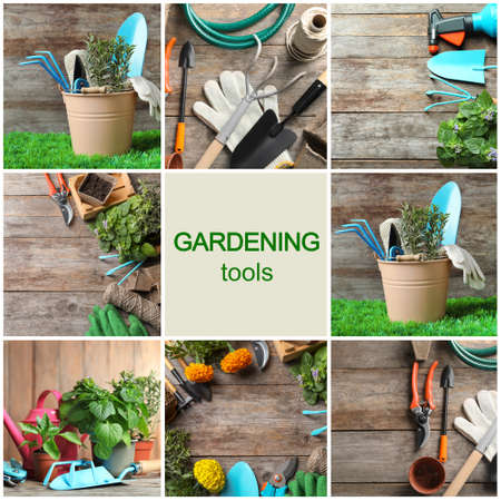 Set with modern gardening tools on wooden background Standard-Bild