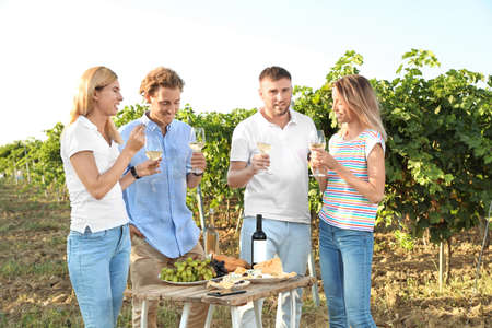 Friends holding glasses of wine and having fun on vineyard picnic Stock Photo