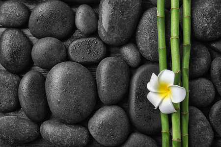Flat lay composition with bamboo branches and spa stones as background. Space for text