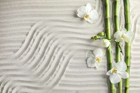 Bamboo branches with flowers on sand, top view. Space for text 스톡 콘텐츠