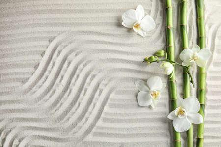 Bamboe takken met bloemen op zand, bovenaanzicht. Ruimte voor tekst Stockfoto