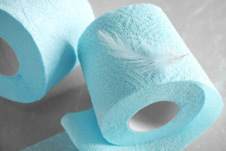 Toilet paper rolls with feather on grey background