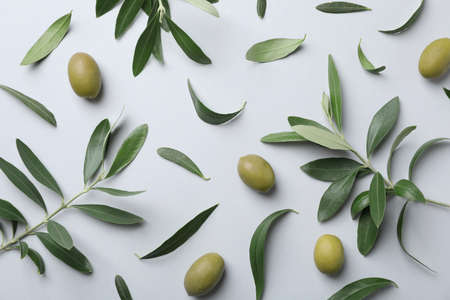 Flat lay composition with fresh green olive leaves, twigs and fruit on light background 版權商用圖片