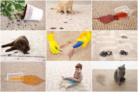 Bezet met verschillende soorten vuil op tapijten. Schoonmaak concept
