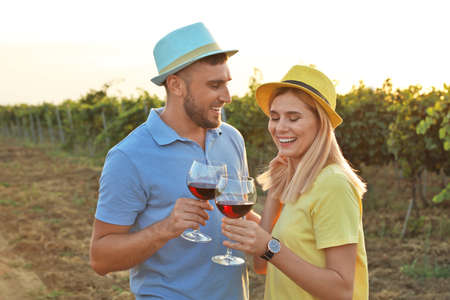 Young couple holding glasses of wine at  vineyard Stock Photo