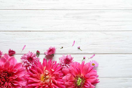 Flat lay composition with beautiful dahlia flowers and space for text on wooden background