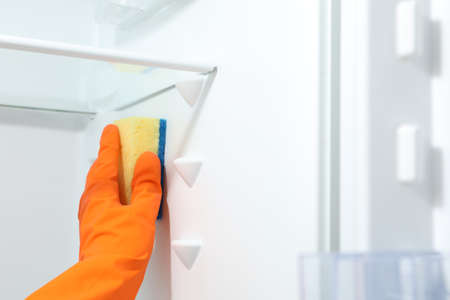 Worker in rubber gloves cleaning empty refrigerator, closeup