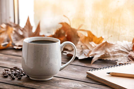 Composition with cup of hot cozy drink and autumn leaves on windowsill. Space for text Stock Photo